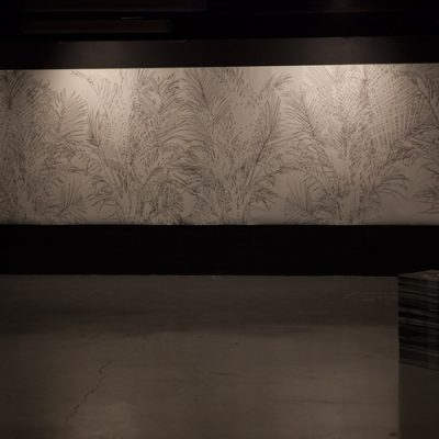 """Paradise Fallen installation view:  - Shadow Palm: drawing, charcoal on fabriano 200gsm, 5m x 1,5m, 2018   - stack of litho prints :the Subject of """"I"""" collaboration with Danai Mupotsa, 2018"""