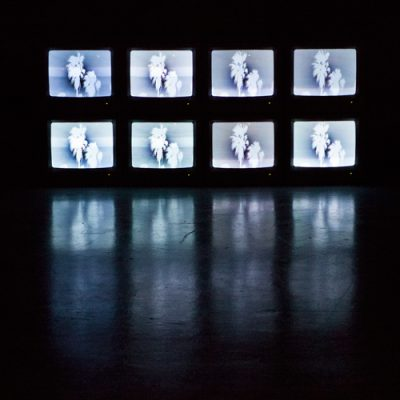 Paradise Fallen, Installation view, shadow palm: video drawing, 8 Cathode Ray T.V's HDV transfer, 2018