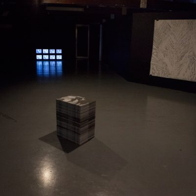 """Paradise Fallen installation view -stack of litho prints :the Subject of """"I"""" collaboration with Danai Mupotsa, 2018  -video drawing, 8 Cathode Ray T.V's HDV transfer, 2018  - Shadow Palm, drawing, charcoal on fabriano 200gsm, 1,5 x 1,5m, 2018"""
